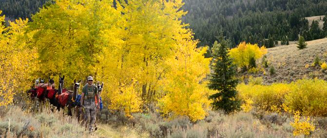 Montana Archery Hunting Gear List - Montana Llama